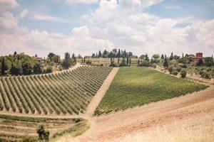 intimate catholic wedding Tuscany - tuscan landscape just outside florence